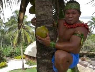 coconut-tree-climbing-1.jpg
